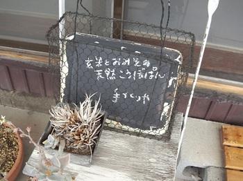 IMGA0385.JPG